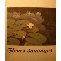 JEAN WEILL fleurs sauvages 1965 Ed. IMA - photographies++