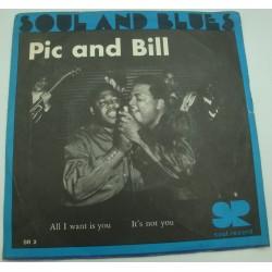 "PIC and BILL all i want is you/it's not you SP 7"" Soul records"